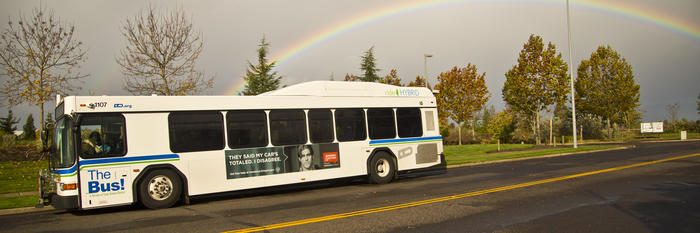 bus-with-rainbow